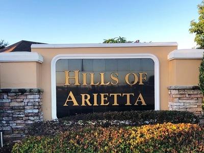 Hills Of Arietta Auburndale Florida