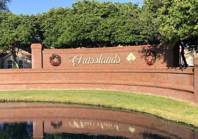 Homes For Rent In Grasslands Lakeland FL
